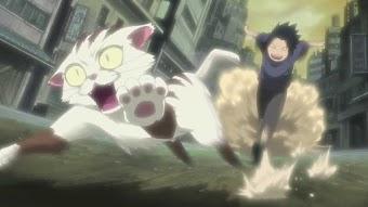 Sasuke's Paw Encyclopedia