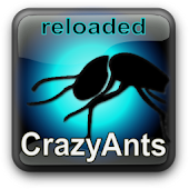 Crazy Ants Live Wallpaper Free