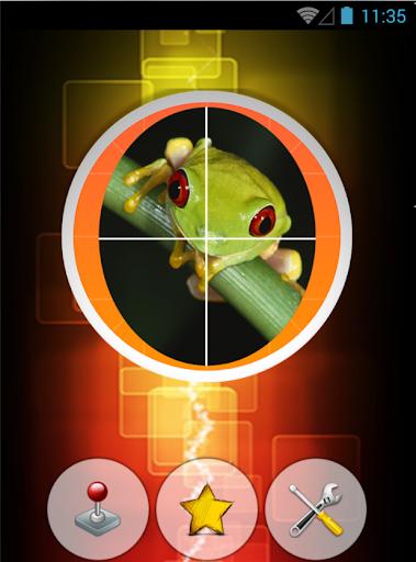 Frog Slide Puzzle Game