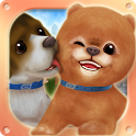 Puppy Run: Peeka Boo icon