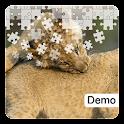 Big Cat Jigsaw Puzzles Demo