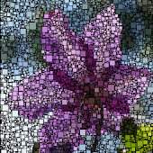 Growing Mosaic Lite