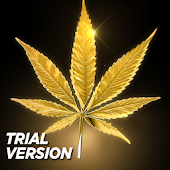 Marijuana Live Wallpaper Free