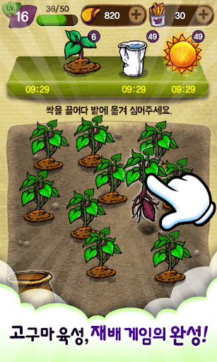 군고구마 육성 재배 게임