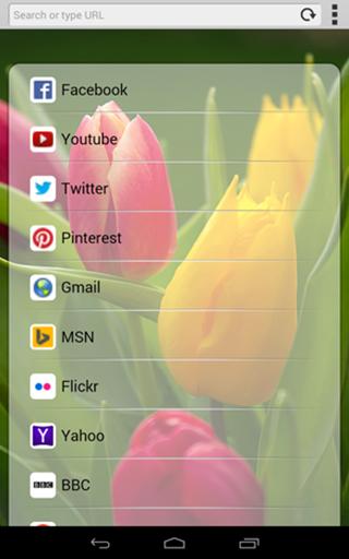 3G Web Browser