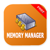 Phone memory manager