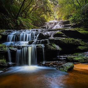 Leura Lower Cascades - Blue Mountains by Chris Gonzalez - Landscapes Waterscapes ( mountains, blue, green, waterfall, cascades, forest, rocks )