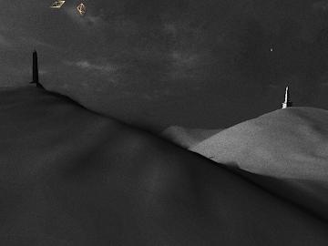 PolyFauna Screenshot 15