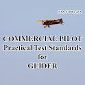 Glider Pilot Test Standards