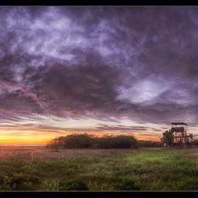 Bird Watchtower by Jörgen Tannerstedt - Landscapes Sunsets & Sunrises ( bird, sweden, kalmar, mörbylånga, sunset, beijershamn, ocean, öland )