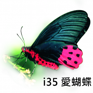 i35 Love Butterfly download