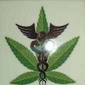 Nature's Choice 420