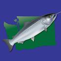 Fish Washington icon