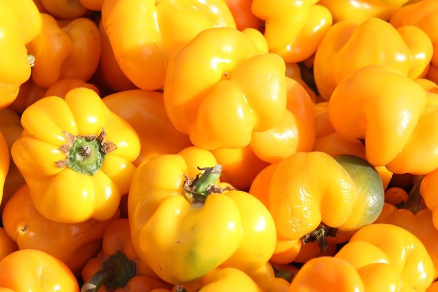Capsicum  by Thakkar Mj - Food & Drink Fruits & Vegetables ( capsicum, food photography, colored, yellow, taste,  )