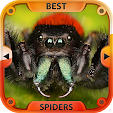 Best Spider.. file APK for Gaming PC/PS3/PS4 Smart TV