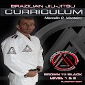 BJJ BROWN-BLACK L1&2 Jiu Jitsu icon