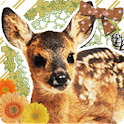 Cute Fawn Live Wallpaper icon