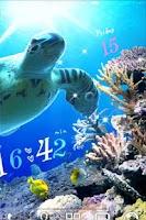 Screenshot of Sea Turtle LiveWallpaper Trial