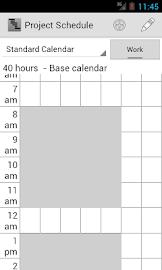 Project Schedule Screenshot 5