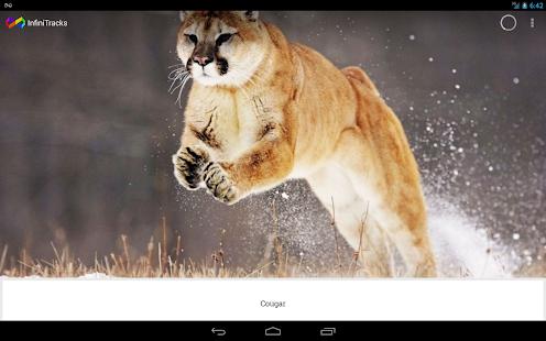 InfiniTracks - screenshot thumbnail