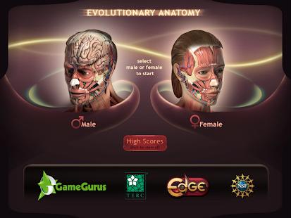 Evolutionary Anatomy