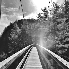 Bridge Over The Gorge by Lisa Montcalm - Black & White Landscapes (  )