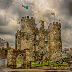 Irish Castles Everywhere by Tom Reiman - Buildings & Architecture Architectural Detail ( ireland, castle )