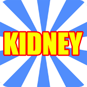 Kidney and Bladder Problems