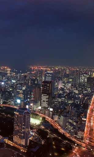 Хмарочоси Токіо