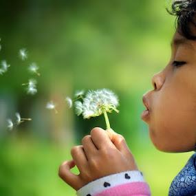 Dandelion blowing by Darlis Herumurti - Babies & Children Children Candids