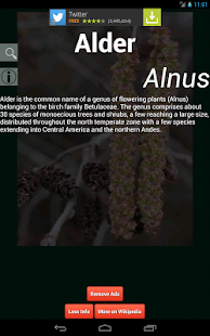 Plants Dictionary screenshot