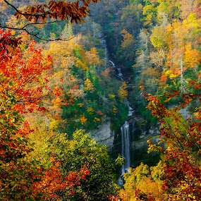 Fall Window by Tom Moors - Landscapes Forests ( window, raven cliff falls, waterfall, leaves, fall color,  )