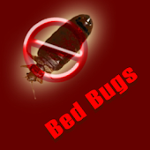 Bed Bugs Guide