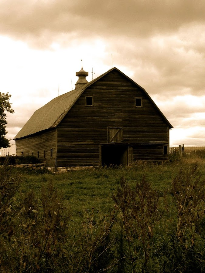 Barn Love by Venita McGuire - Buildings & Architecture Decaying & Abandoned