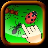 Don't bug the ladybug!