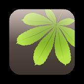 LeafWatch