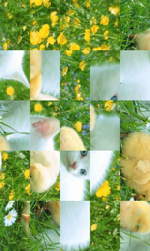 Cute Animals puzzle - screenshot