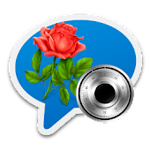 Flower Rose Lock Chat