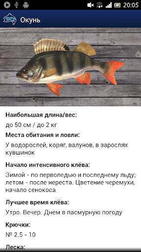 Прогноз рыбалки и погоды PRO
