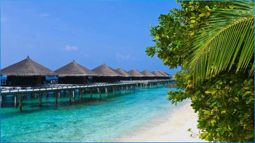 玩免費娛樂APP|下載美丽的海滩壁纸 app不用錢|硬是要APP