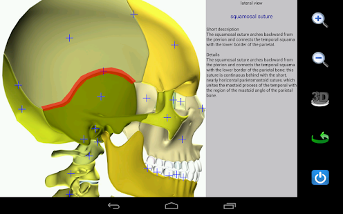 Visual Anatomy - screenshot thumbnail