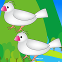 Bird Hunting icon