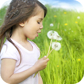 Dandelion Girl Live Wallpaper