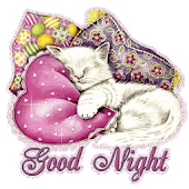 Good Night Images Greeting SMS