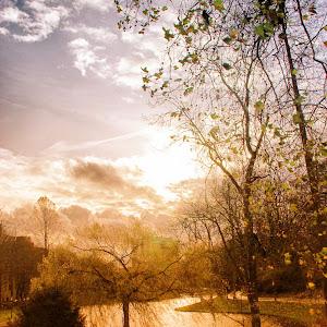 Bruselas Park.jpg