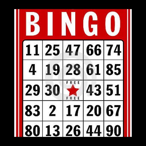 Bingo Housie Slots