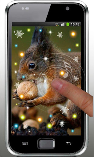 Winter Squirrel live wallpaper