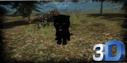 真实 豹 幼兽 模拟器