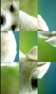 Cute Animals puzzle - screenshot thumbnail
