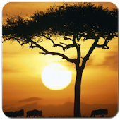 See Africa Wallpapers